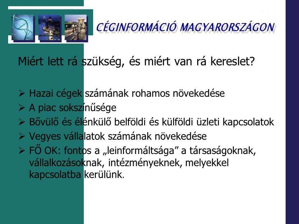 Hagyományos és elektronikus periodikumok Pl.: Magyar Hírlap (http:// www.magyarhirlap.hu + CD-ROM) Heti Világgazdaság (HVG)( http://www.hvg.hu + CD-ROM) Cash Flow (http://www.cashflow.hu) Portálok,hírszolgálatok Pl.: Cégnet (http://www.cegnet.hu) Origó – Gazdaság (http://www.origo.hu) Éves vállalati (üzleti) jelentések → szürke irodalom Pl.: Corvinus Egyetem Központi Könyvtára (http://www.lib.uni-corvinus.hu ) Szakirodalmi és faktogarfikus tájékoztató rendszerek Dialog Corporation (www.dialog.com) adatbázisokat is szolgáltat → Pl.: ICC British Company Directory (File 561)