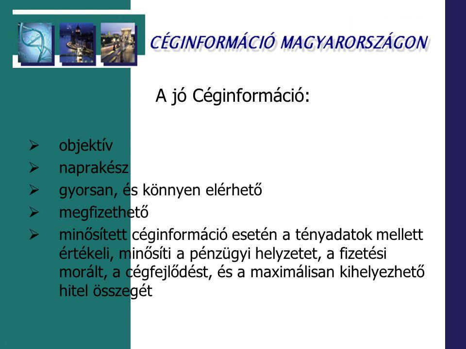Adatnyilvántartó rendszerek Creditreform- Interinfo Kft.