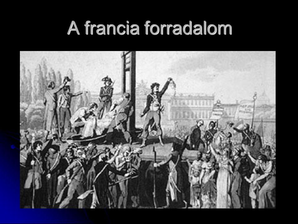 A franciaországi ipari forradalom kibontakozása idején a munkásság életkörülményei még nem javultak A franciaországi ipari forradalom kibontakozása idején a munkásság életkörülményei még nem javultak A szabad verseny a kispolgárokat tette tönkre A szabad verseny a kispolgárokat tette tönkre Párizsba megérkezett a palermói forradalom híre Párizsba megérkezett a palermói forradalom híre Lajos Fülöppel szemben a közép- és kispolgárság szélesebb választójogot követelt a kormányzat ezt megtagadta Lajos Fülöppel szemben a közép- és kispolgárság szélesebb választójogot követelt a kormányzat ezt megtagadta A forradalom elsöpörte a hatalmat ('48.