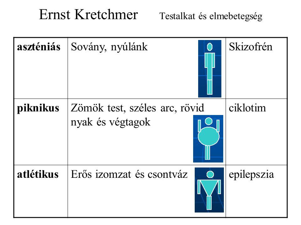 Ernst Kretchmer Testalkat és elmebetegség aszténiásSovány, nyúlánkSkizofrén piknikusZömök test, széles arc, rövid nyak és végtagok ciklotim atlétikusErős izomzat és csontvázepilepszia
