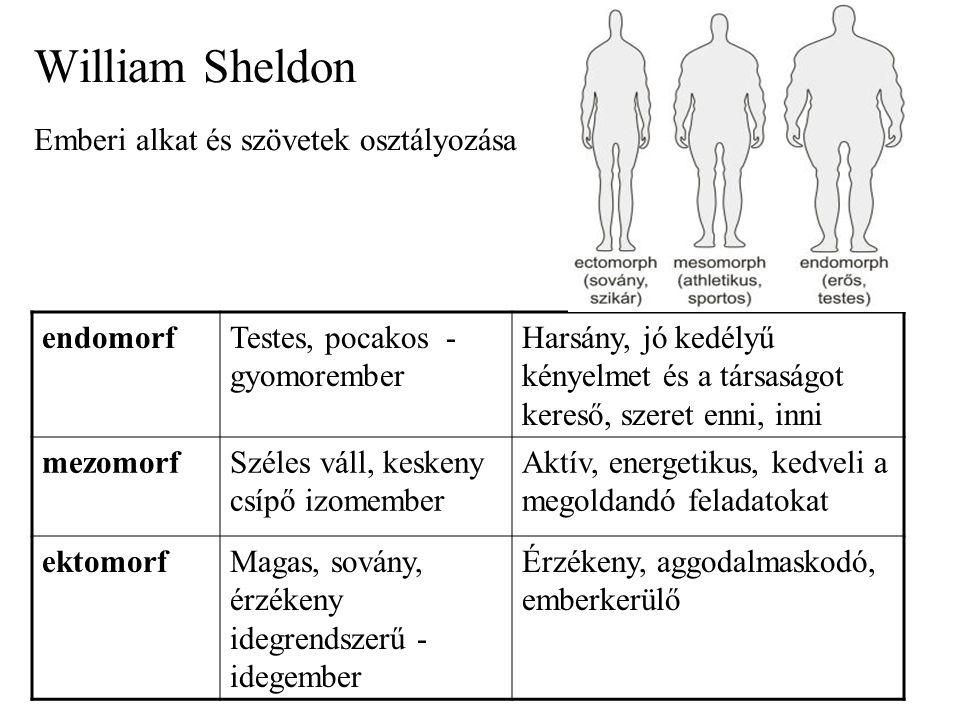 William Sheldon Emberi alkat és szövetek osztályozása endomorfTestes, pocakos - gyomorember Harsány, jó kedélyű kényelmet és a társaságot kereső, szeret enni, inni mezomorfSzéles váll, keskeny csípő izomember Aktív, energetikus, kedveli a megoldandó feladatokat ektomorfMagas, sovány, érzékeny idegrendszerű - idegember Érzékeny, aggodalmaskodó, emberkerülő