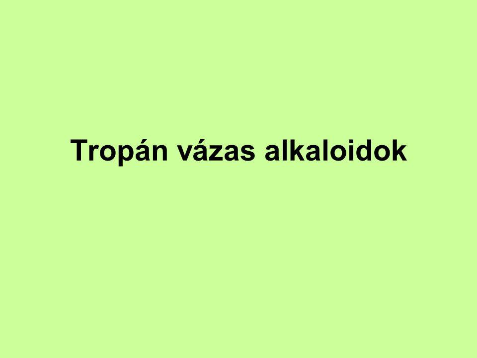 Tropán vázas alkaloidok