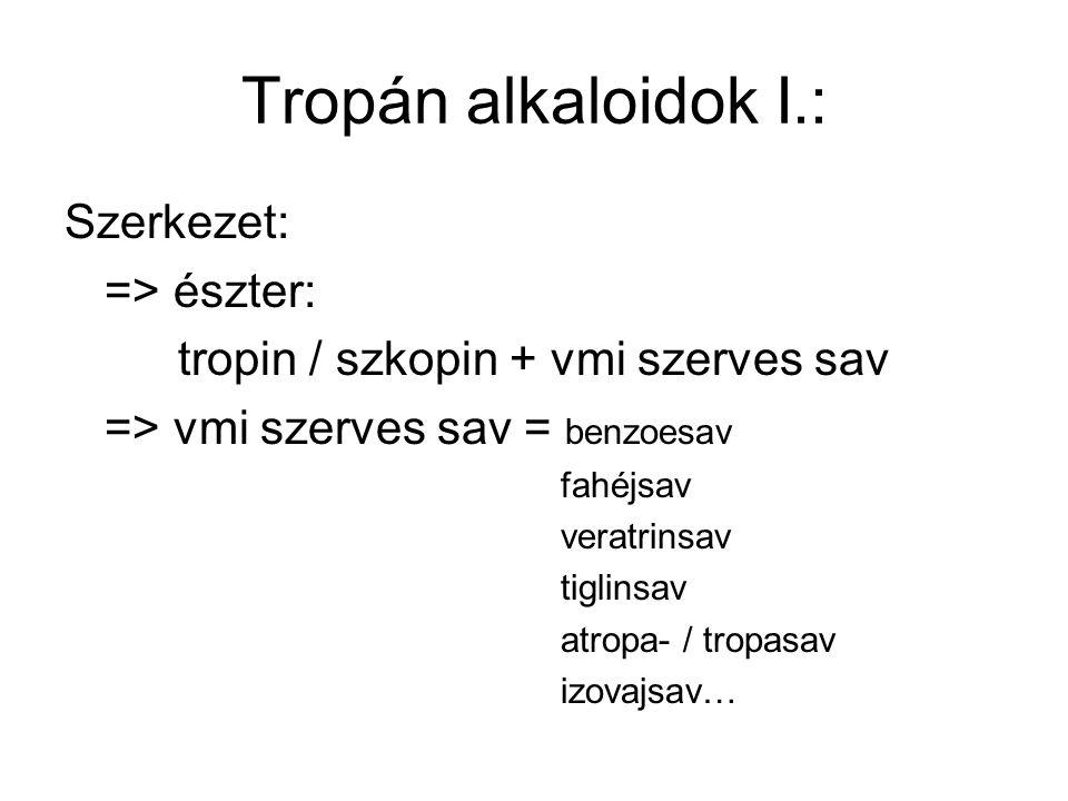 Tropán alkaloidok I.: Szerkezet: => észter: tropin / szkopin + vmi szerves sav => vmi szerves sav = benzoesav fahéjsav veratrinsav tiglinsav atropa- /