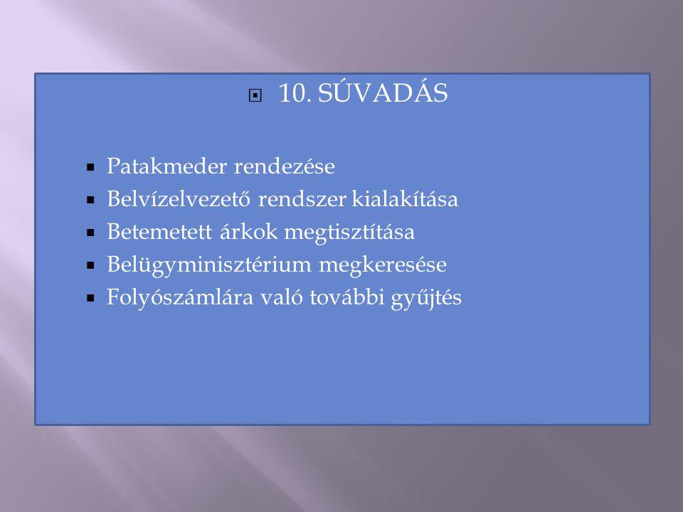  10. SÚVADÁS  Patakmeder rendezése  Belvízelvezető rendszer kialakítása  Betemetett árkok megtisztítása  Belügyminisztérium megkeresése  Folyósz