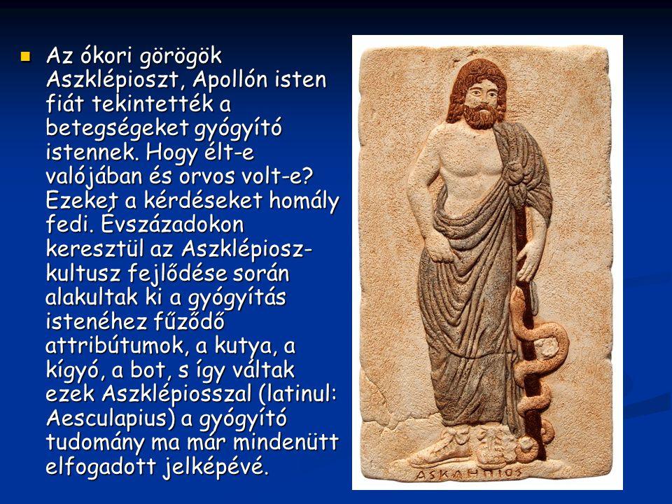 Az ókori görögök Aszklépioszt, Apollón isten fiát tekintették a betegségeket gyógyító istennek. Hogy élt-e valójában és orvos volt-e? Ezeket a kérdése