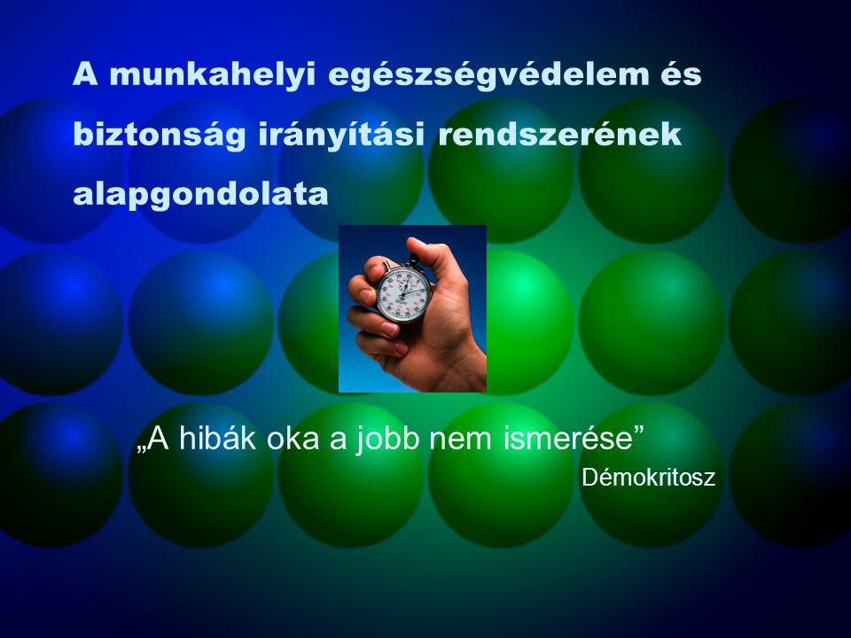 MEBIR OMKTK. Kft 2006. December 12.-13.-14. Kapás Zsolt E-mail: zsolt.kapas@vnet.hu