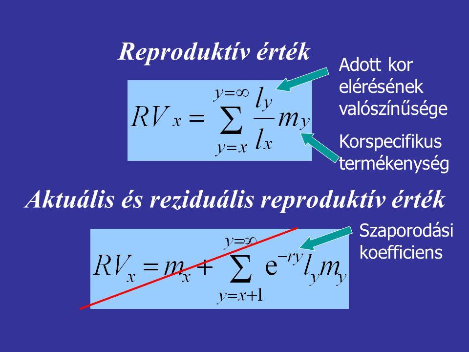 Reproduktív érték Aktuális és reziduális reproduktív érték Adott kor elérésének valószínűsége Korspecifikus termékenység Szaporodási koefficiens