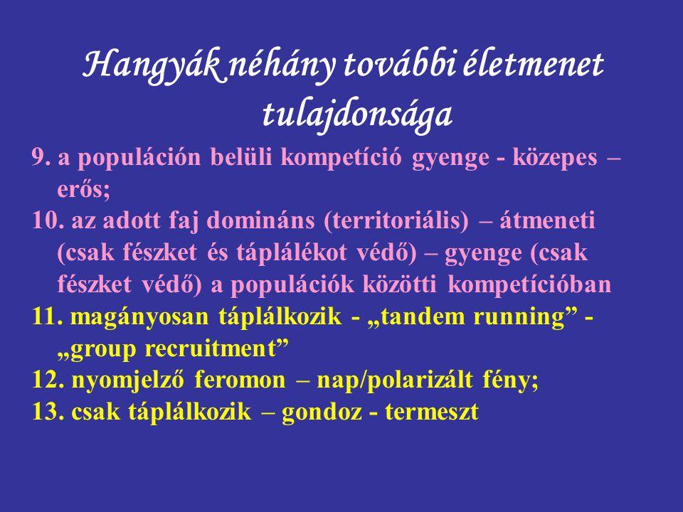 Hangyák néhány további életmenet tulajdonsága 9. a populáción belüli kompetíció gyenge - közepes – erős; 10. az adott faj domináns (territoriális) – á