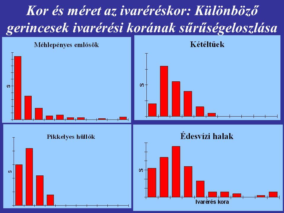 Kor és méret az ivaréréskor: Különböző gerincesek ivarérési korának sűrűségeloszlása