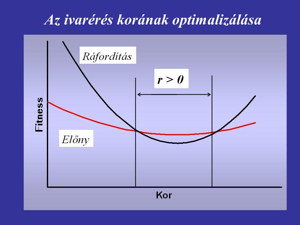 Adott kor (x) elérésének valószínűsége l(x), a korspecifikus termékenység, m(x) és a kettő szorzata az életkor függvényében.