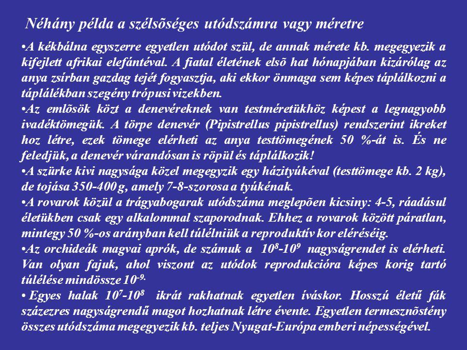 Reproduktív élettartam Paritás: (1) Szemelparitás: az egyed életében csak egyszer szaporodik (pl.