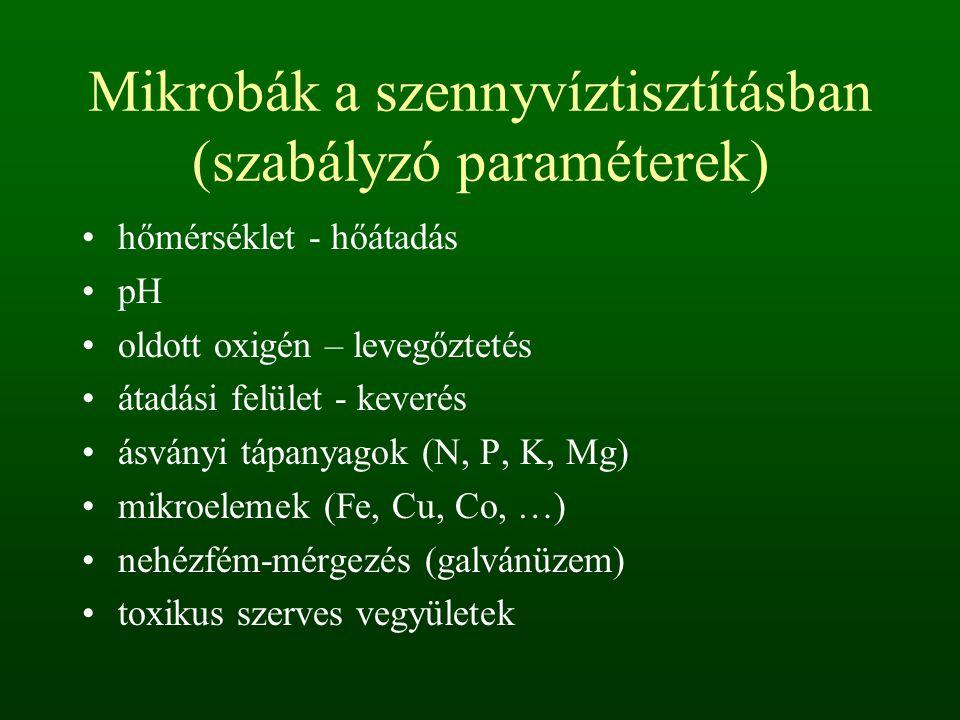 Mikrobák a szennyvíztisztításban (szabályzó paraméterek) hőmérséklet - hőátadás pH oldott oxigén – levegőztetés átadási felület - keverés ásványi tápanyagok (N, P, K, Mg) mikroelemek (Fe, Cu, Co, …) nehézfém-mérgezés (galvánüzem) toxikus szerves vegyületek