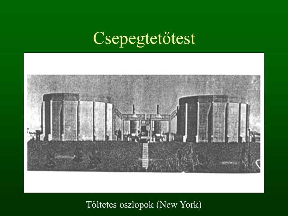 Csepegtetőtest Töltetes oszlopok (New York)