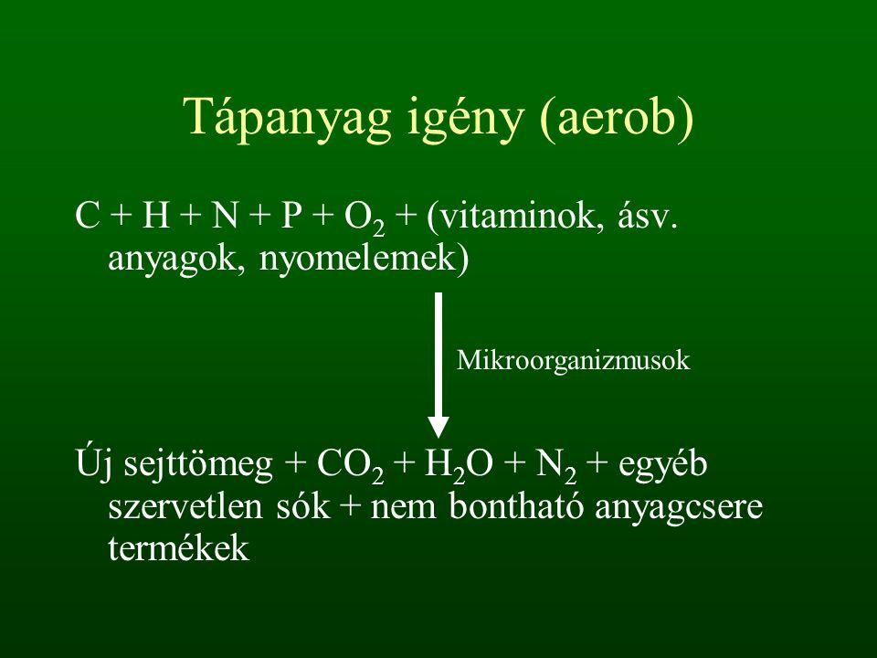 Tápanyag igény (aerob) C + H + N + P + O 2 + (vitaminok, ásv. anyagok, nyomelemek) Új sejttömeg + CO 2 + H 2 O + N 2 + egyéb szervetlen sók + nem bont