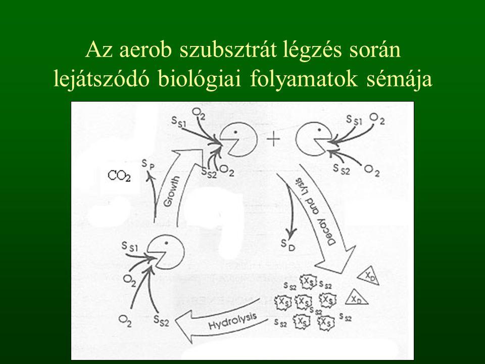 Csepegtetőtestes szennyvíztisztítás A lényege, hogy a szennyvizet egy mozgó-forgó elosztó rendszer a csepegtetőtest felszínére egyenletesen szétosztja.