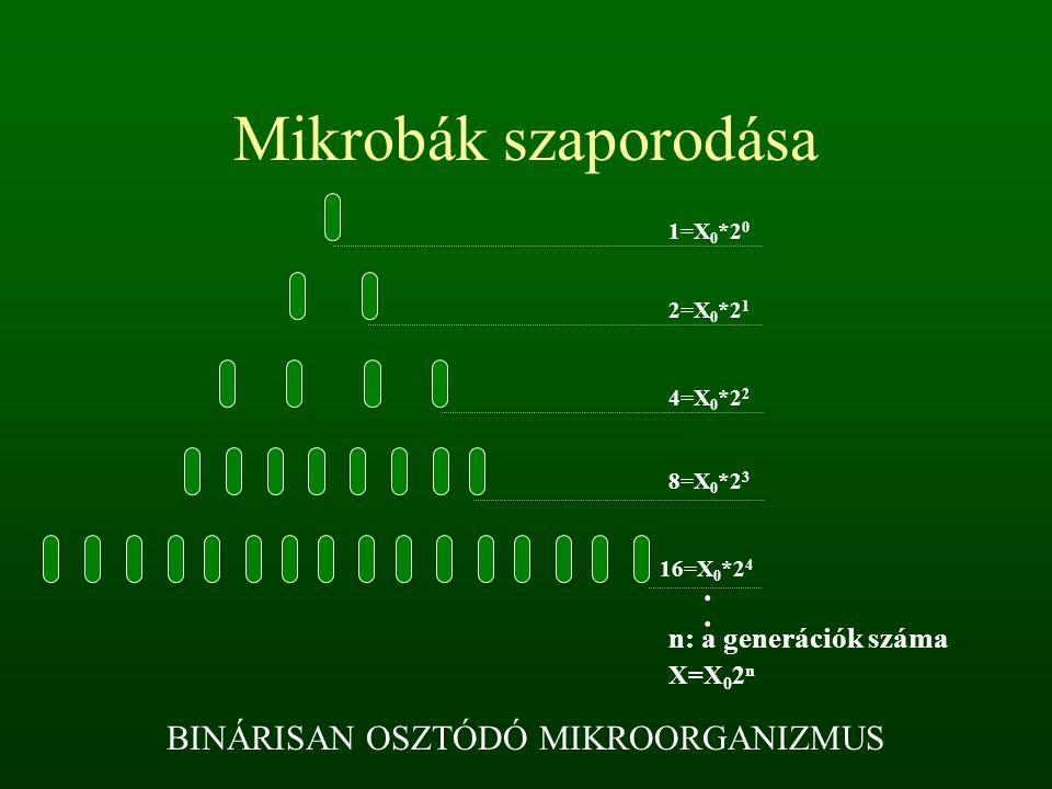 Mikrobák szaporodása 2=X 0 *2 1 4=X 0 *2 2 8=X 0 *2 3 16=X 0 *2 4 1=X 0 *2 0.. n: a generációk száma X=X 0 2 n BINÁRISAN OSZTÓDÓ MIKROORGANIZMUS