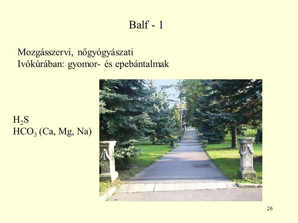 26 Balf - 1 Mozgásszervi, nőgyógyászati Ivókúrában: gyomor- és epebántalmak H 2 S HCO 3 (Ca, Mg, Na)