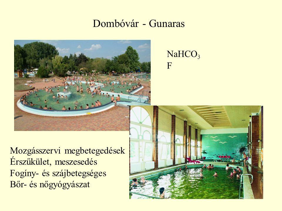 34 Dombóvár - Gunaras NaHCO 3 F Mozgásszervi megbetegedések Érszűkület, meszesedés Fogíny- és szájbetegséges Bőr- és nőgyógyászat