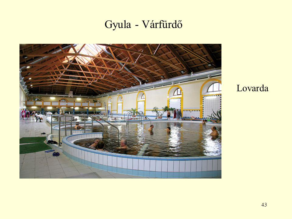 43 Gyula - Várfürdő Lovarda