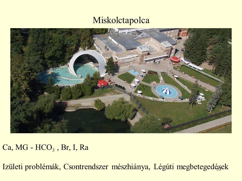 53 Miskolctapolca Ca, MG - HCO 3, Br, I, Ra Izületi problémák, Csontrendszer mészhiánya, Légúti megbetegedések