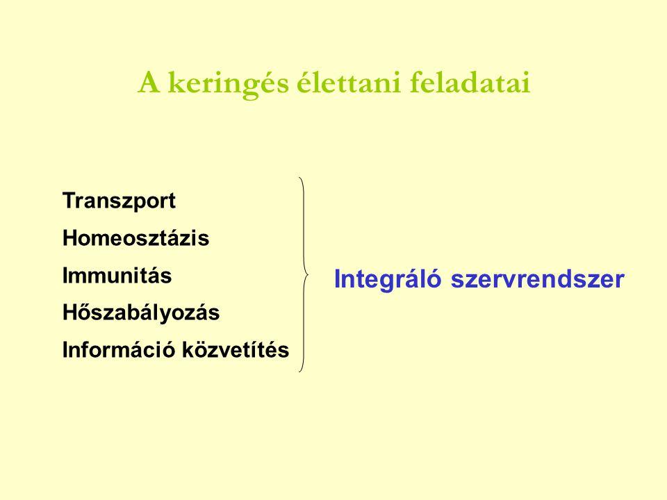 A keringés élettani feladatai Transzport Homeosztázis Immunitás Hőszabályozás Információ közvetítés Integráló szervrendszer