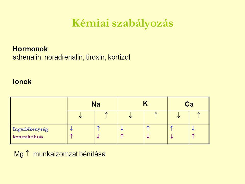 Kémiai szabályozás Hormonok adrenalin, noradrenalin, tiroxin, kortizol Ionok  Ingerlékenység kontraktilitás       Na K C