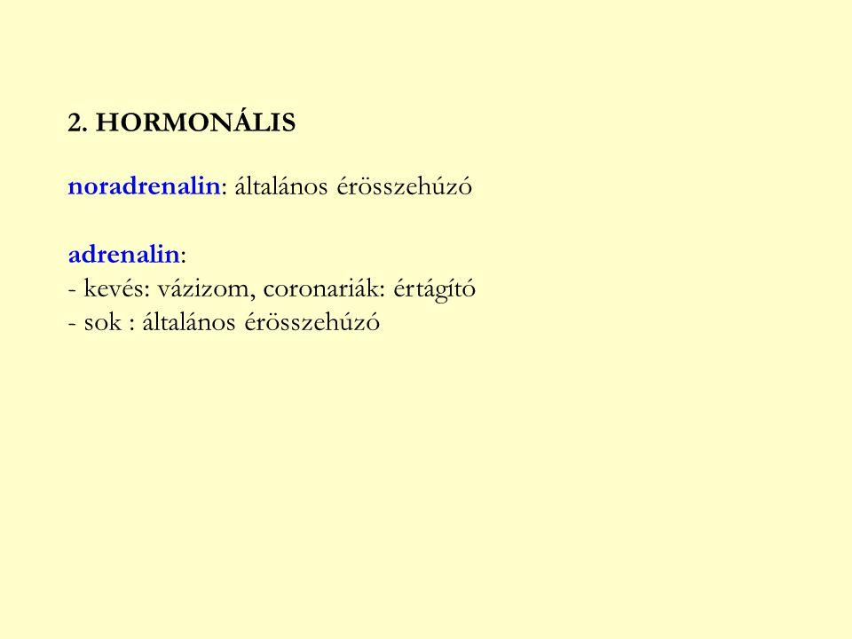 2. HORMONÁLIS noradrenalin: általános érösszehúzó adrenalin: - kevés: vázizom, coronariák: értágító - sok : általános érösszehúzó