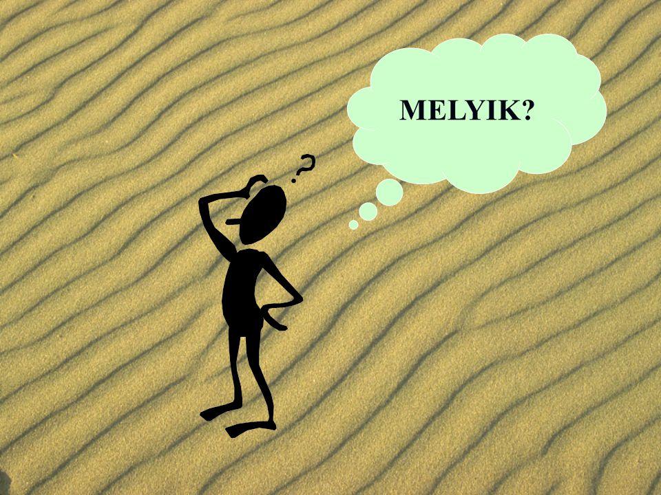 MELYIK?