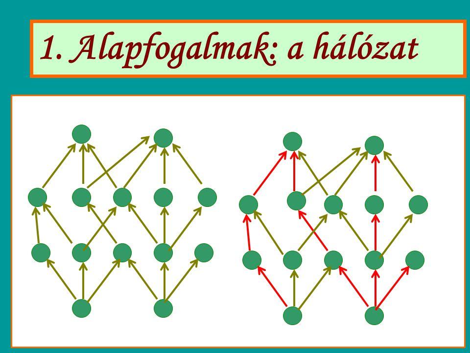1. Alapfogalmak: a hálózat