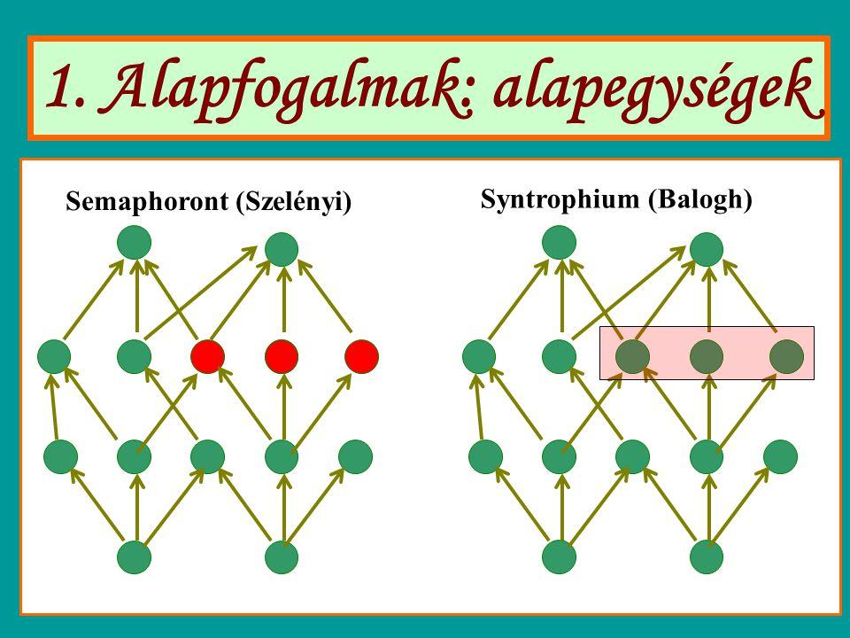 1. Alapfogalmak: alapegységek Semaphoront (Szelényi) Syntrophium (Balogh)