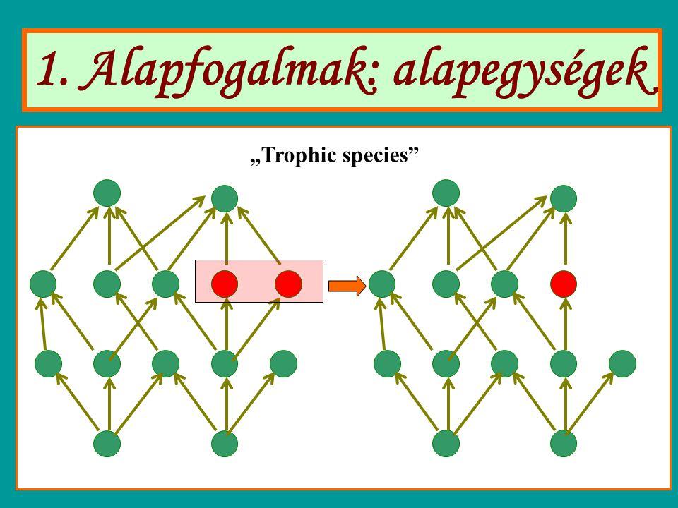 """1. Alapfogalmak: alapegységek """"Trophic species"""""""