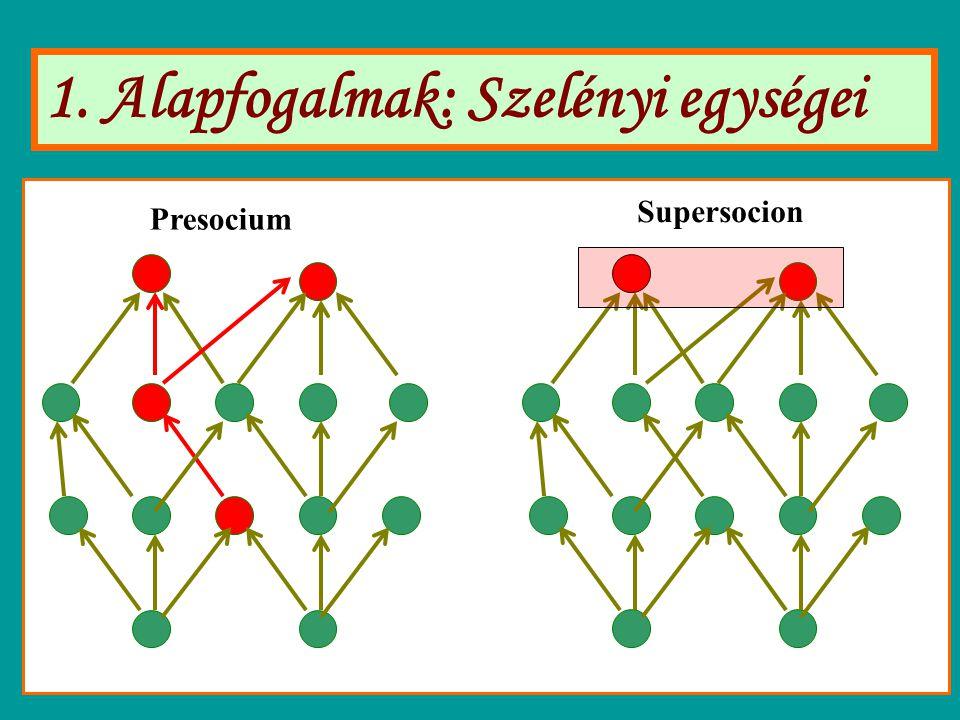1. Alapfogalmak: Szelényi egységei Presocium Supersocion
