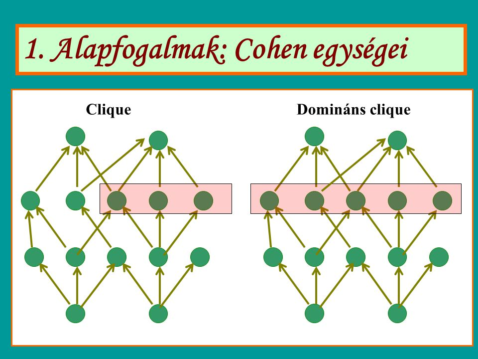 1. Alapfogalmak: Cohen egységei CliqueDomináns clique