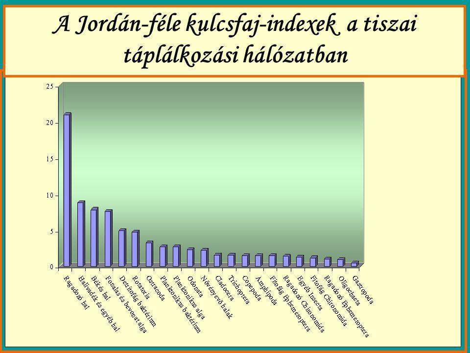 A Jordán-féle kulcsfaj-indexek a tiszai táplálkozási hálózatban