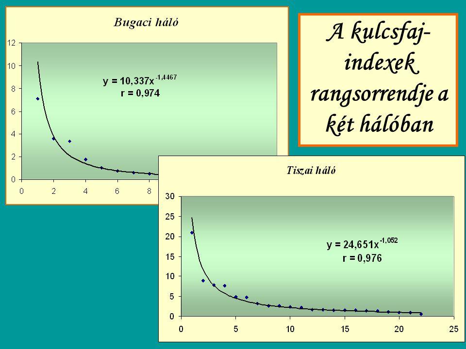 A kulcsfaj- indexek rangsorrendje a két hálóban