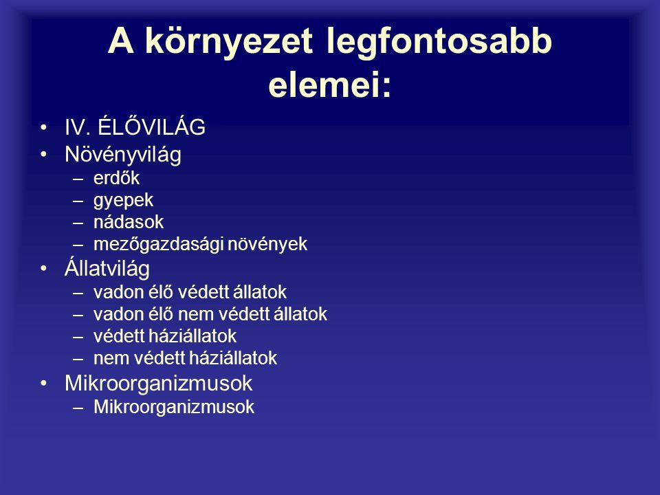 Környezetvédelmi alapfogalmak Angyalné Kovács Anikó 2006