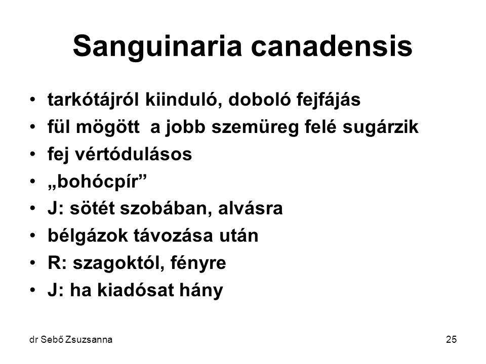 """dr Sebő Zsuzsanna25 Sanguinaria canadensis tarkótájról kiinduló, doboló fejfájás fül mögött a jobb szemüreg felé sugárzik fej vértódulásos """"bohócpír"""""""