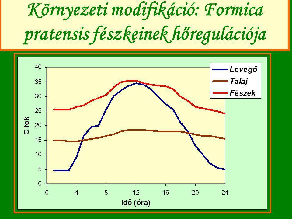 További példák a környzeti modifikációra (NK= főleg saját, ÖM= más, pl.