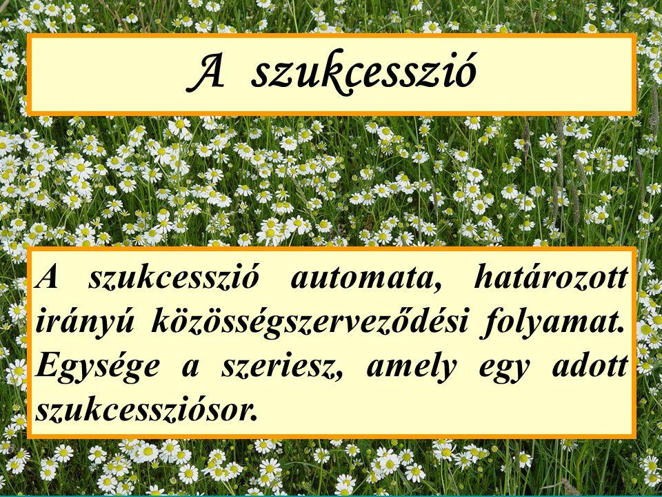 A szukcesszió fajtái 1.Szekuláris (földtörténeti léptékű) 2.