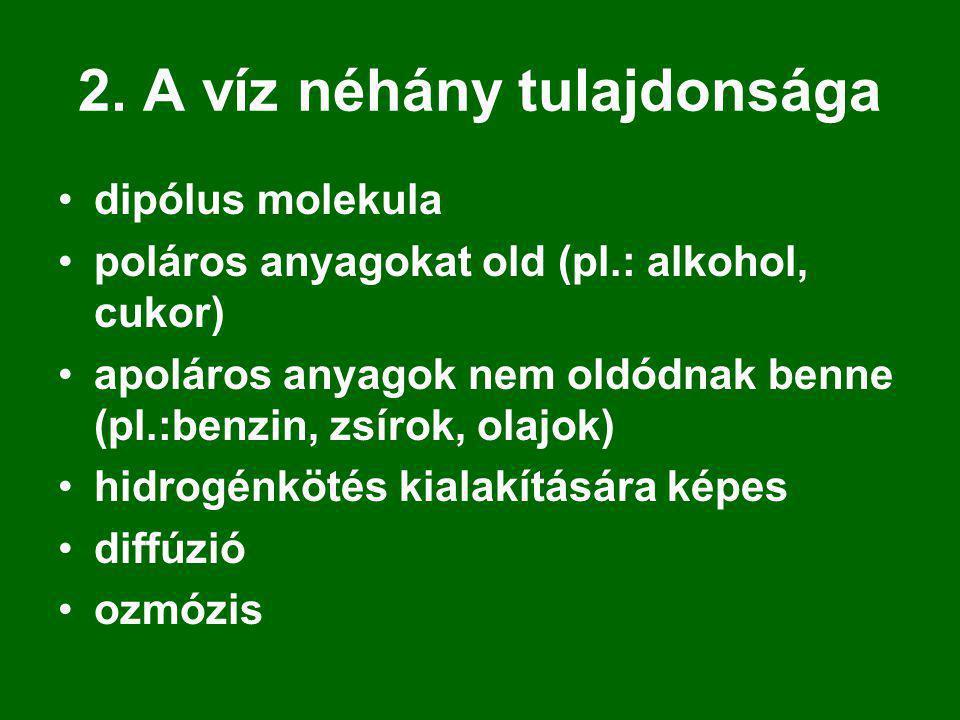 2. A víz néhány tulajdonsága dipólus molekula poláros anyagokat old (pl.: alkohol, cukor) apoláros anyagok nem oldódnak benne (pl.:benzin, zsírok, ola