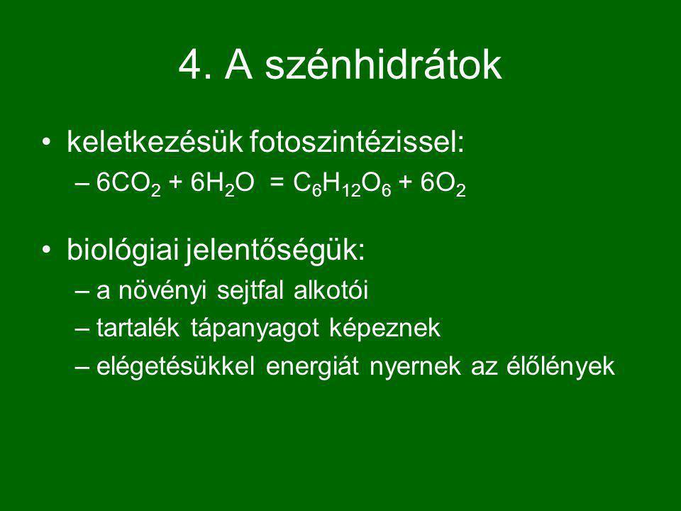 4. A szénhidrátok keletkezésük fotoszintézissel: –6CO 2 + 6H 2 O = C 6 H 12 O 6 + 6O 2 biológiai jelentőségük: –a növényi sejtfal alkotói –tartalék tá