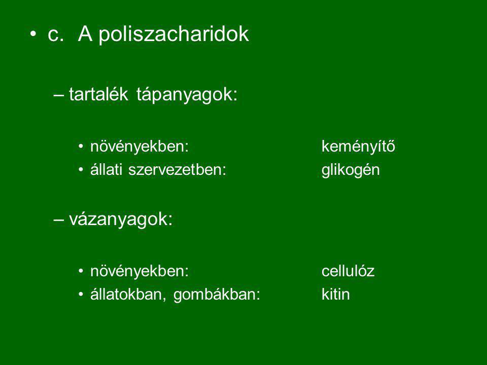 c.A poliszacharidok –tartalék tápanyagok: növényekben: keményítő állati szervezetben:glikogén –vázanyagok: növényekben:cellulóz állatokban, gombákban:kitin