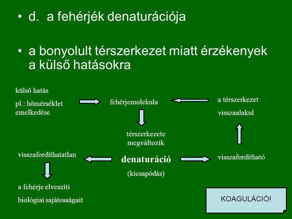 d.a fehérjék denaturációja a bonyolult térszerkezet miatt érzékenyek a külső hatásokra külső hatás pl.: hőmérséklet emelkedése térszerkezete megváltozik denaturáció (kicsapódás) visszafordíthatatlan fehérjemolekula a fehérje elveszíti biológiai sajátosságait visszafordítható a térszerkezet visszaalakul KOAGULÁCIÓ!