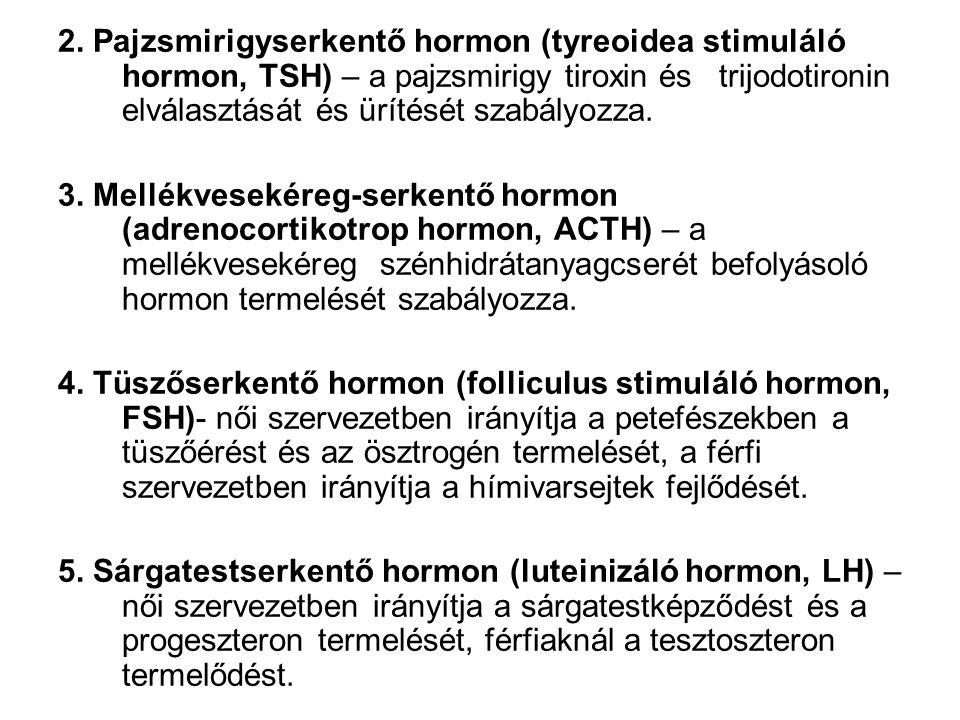 2. Pajzsmirigyserkentő hormon (tyreoidea stimuláló hormon, TSH) – a pajzsmirigy tiroxin és trijodotironin elválasztását és ürítését szabályozza. 3. Me