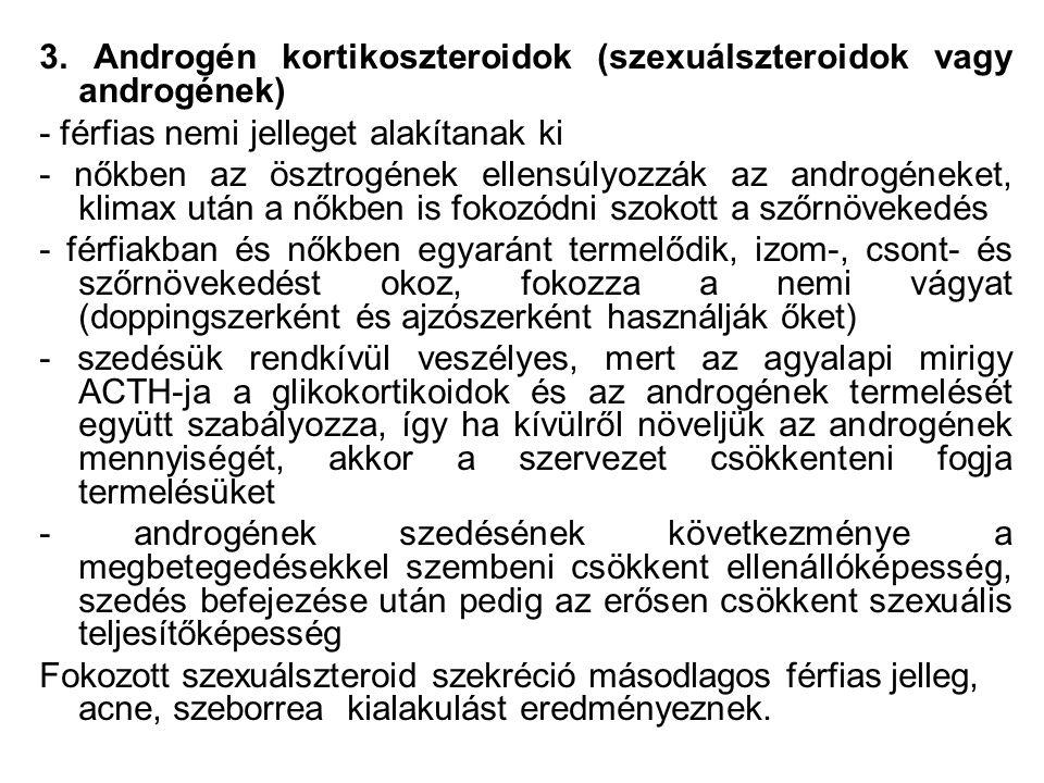 3. Androgén kortikoszteroidok (szexuálszteroidok vagy androgének) - férfias nemi jelleget alakítanak ki - nőkben az ösztrogének ellensúlyozzák az andr