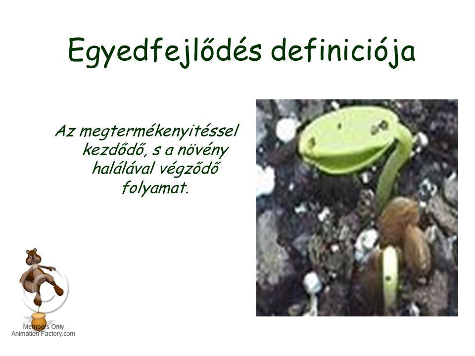 Egyedfejlődés definiciója Az megtermékenyitéssel kezdődő, s a növény halálával végződő folyamat.