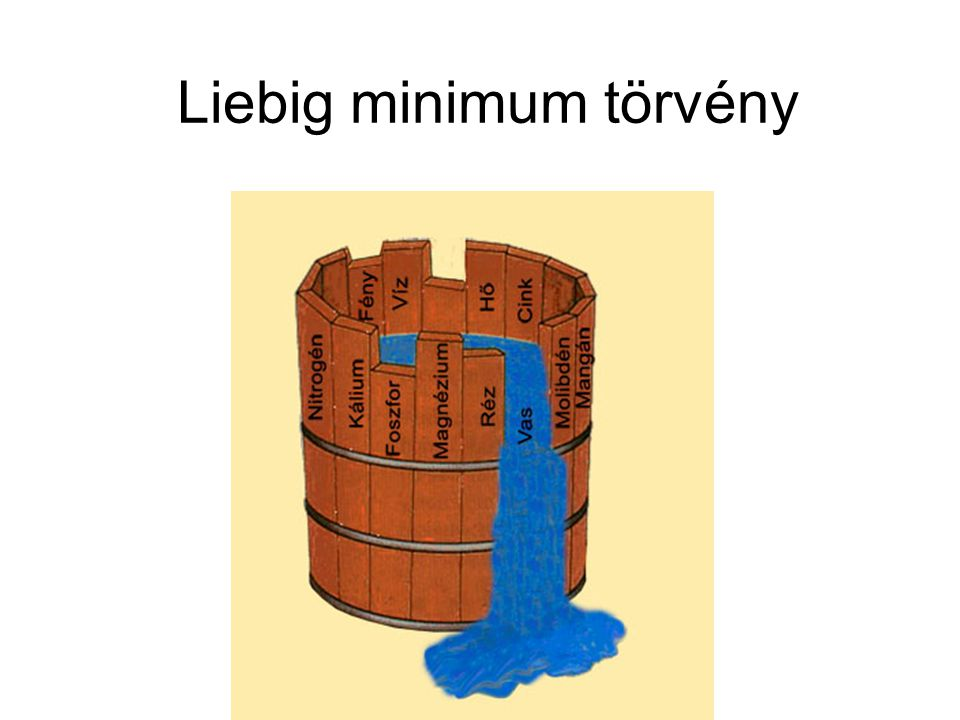 Liebig minimum törvény