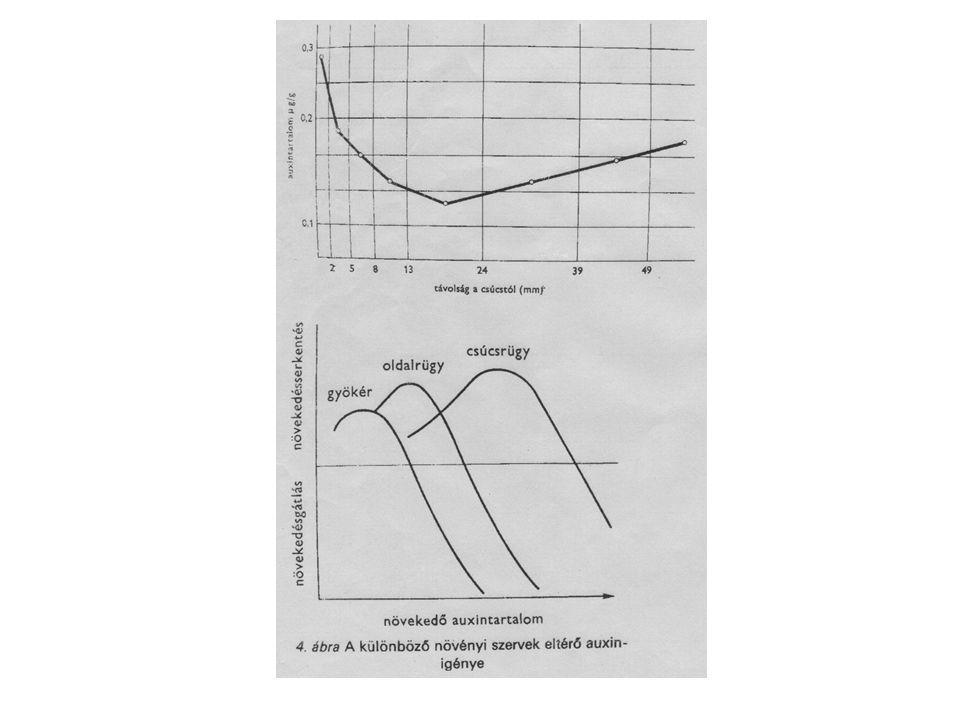 A fotoszintézis általános reakcióegyenlete: 6 CO 2 + 6 H 2 OC 6 H 12 O 6 + 6 O 2 fény
