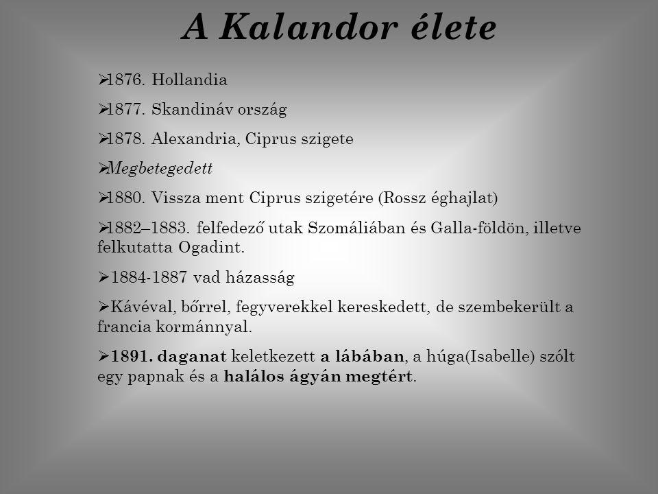 A Kalandor élete  1876. Hollandia  1877. Skandináv ország  1878. Alexandria, Ciprus szigete  Megbetegedett  1880. Vissza ment Ciprus szigetére (R