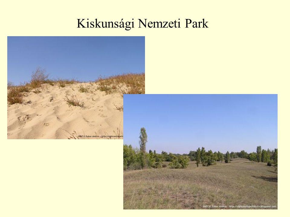 28 Kiskunsági Nemzeti Park